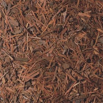 Lapacho - zioła na wagę